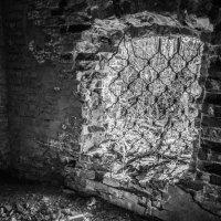 В руинах храма :: Elena Ignatova