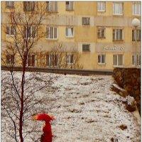 Весна красна идёт! :: Кай-8 (Ярослав) Забелин