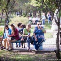 Весна :: Андрей Чернышов