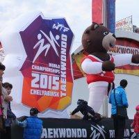 Чемпионат мира по Taekwondo г Челябинск! :: Павел