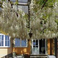 Кафе на Villa Cimbrone :: михаил кибирев