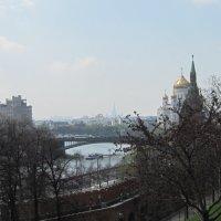 Москва. Май. :: Маера Урусова