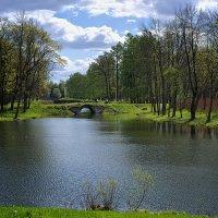 в парке :: SvetlanaLan .