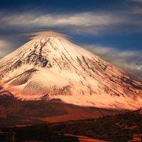 Fuji :: Slava Hamamoto