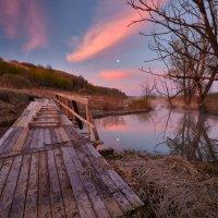 Свежерубленный к облакам... :: Roman Lunin