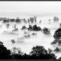 Туман крепчал :: Александр Белоглазов