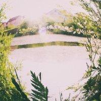 Озеро :: Ілона Орлова