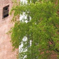 Весна в городе :: Вера Моисеева