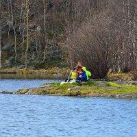Зеленый полуостров. :: kolin marsh