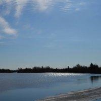 Весеннее озеро :: Вера Андреева