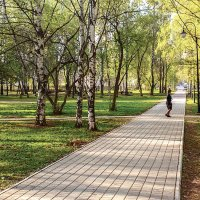 Весна в парке. :: Валерий Молоток