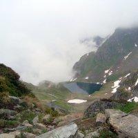 Черное озеро :: Olga