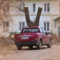 Новое оружие укров :: Валерий Лазарев
