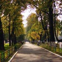 Ранняя осень :: Денис Масленников