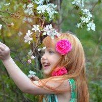 растущее и цветущее )) :: Райская птица Бородина
