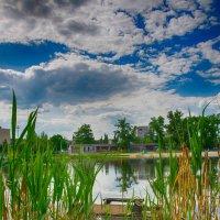 мостик рыбака :: Ксения Довгопол