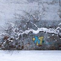 дуга на голубом :: Egor Moskalev