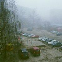 Утро.Туман :: Владимир Безгрешнов