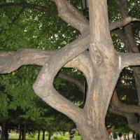 """дерево - """"иероглиф"""" :: ИГОРЬ МОСКАЛЕВ"""