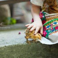 ... :: Ольга Шеломенцева