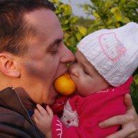 Мы делили мандарин... :: Таня Дворецкая