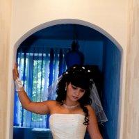 свадьба :: сергей михайлов