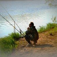 Ловись, рыбка... :: Елена Баландина