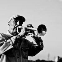 Уличный музыкант :: Наташа Барова