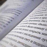 Амариллис день и ночь. :: Вадим Михеев