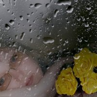 дождь :: Татьяна Зема
