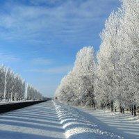 Такой я вижу дорогу.. :: Александр Герасенков