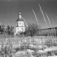 Свенский монастырь :: Владимир Безгрешнов