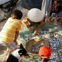 Вьетнам, Муй Не :: Дмитрий Брицко