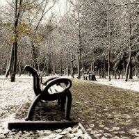 Первый снег.. :: Александр Герасенков