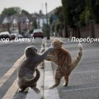 ... :: Петр Жеромский