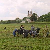 из монастырских будней :: Владимир Безгрешнов