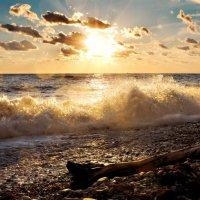 вечерний пляж :: boroda boroda
