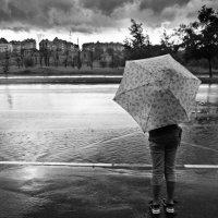 В дождь. :: Юлия Холодкова
