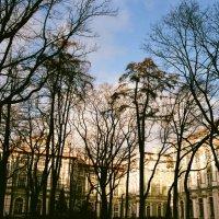 Зимний дворец :: Kate Sparrow