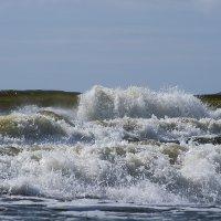 море закипела :: ziemke ...