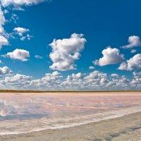 Розовое озеро :: Владимир Богославцев(ua6hvk)