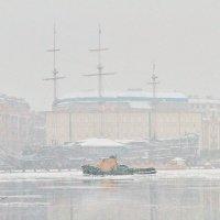 зимний этюд :: Анатолий Сысоев