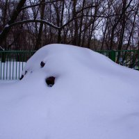 Снегом припорошена. :: Яков Реймер