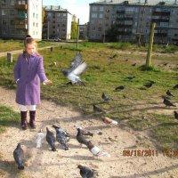 голуби :: Людмила Красникова