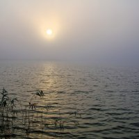 Солнце в тумане :: Владимир Богославцев(ua6hvk)