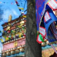 самый северный храм Будды :: Екатерина Яковлева