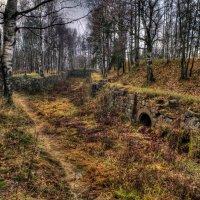 Старые укрепления на Батарейной горе. Выборг. :: Nikolay T