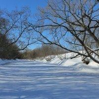 после снегопада река протва.моск. обл :: юрий макаров
