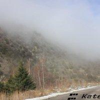 Туман над горной дорогой :: KateRina K