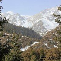 заснеженные вершины Тянь-Шаня :: KateRina K